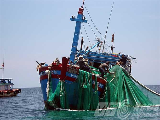 Khẩn trương thu lưới cho kịp vụ cá Nam