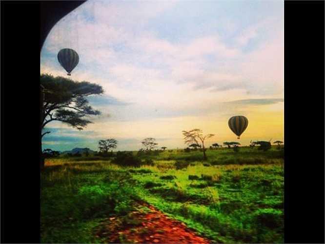 Các siêu giàu sẵn sàng chi 80.000 USD (khoảng 1,7 tỷ đồng) để có một chuyến đi săn trong ba tuần bằng máy bay phản lực tư nhân tại châu Phi, được ăn các món do đầu bếp hàng đầu nấu, ngủ trong lều có hai phòng ngủ và phòng tắm, được cưỡi khinh khí cầu và uống rượu sâm banh suốt cả ngày.