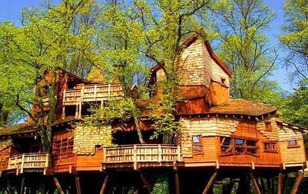 Alnwick Garden là ngôi nhà bằng gỗ trên cây đắt nhất thế giới, trị giá 4 - 6 triệu USD. Ngôi nhà được cặp vợ chồng người Scotland Duke và Duchess cho thuê.