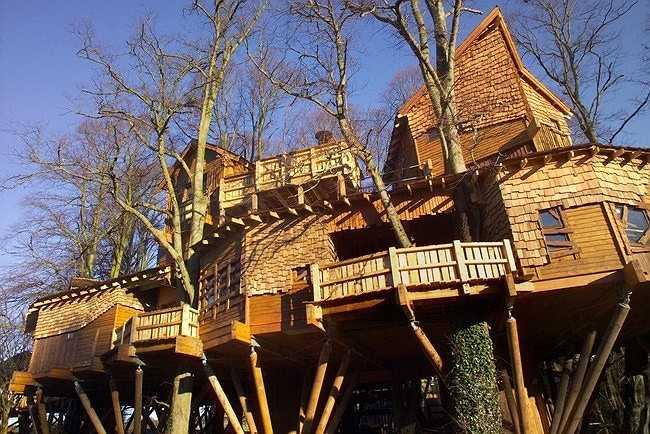 Cặp đôi Duke và Duchess đã biến ngôi nhà cây này trở thành một điểm đến hấp dẫn du khách.
