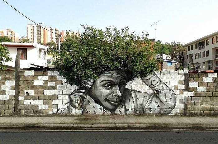 Tán cây trở thành bộ tóc tuyệt đẹp của chàng thanh niên