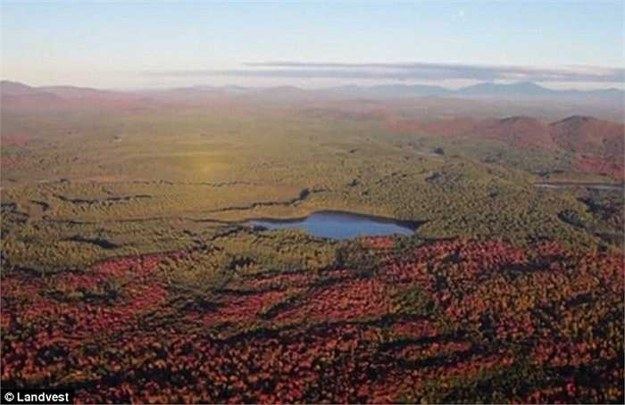 Khu đất mênh mông với rừng cây đổi màu nhìn từ trên cao mà tỷ phú Jack Ma đã mua