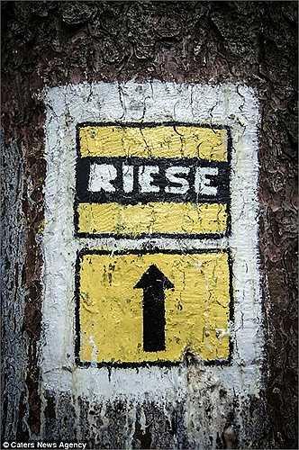 Dự án xây dựng đường hầm này có tên Riese, trong tiếng Đức có nghĩa là 'khổng lồ'
