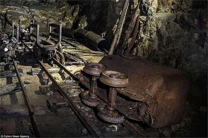Hệ thống hầm ngầm bao gồm 7 khu phức hợp dưới núi Sowie bao gồm: Wlodarz, Osowka, Sokolec, Sobon, Rzeczka, Jugowice và đường hầm của Hitler dưới lâu đài Ksiaz trong Walbrzych