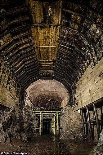 Hàng ngàn tù nhân chiến tranh, bao gồm cả trẻ em ở độ tuổi lên 10, đã phải làm việc cật lực để đào hệ thống đường hầm này