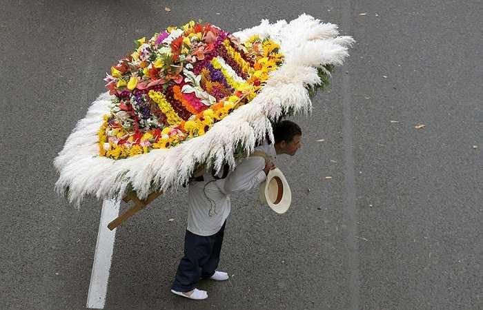 Người đàn ông mang trên lưng chiếc 'mũ hoa khổng lồ' trong lễ hội hoa được tổ chức thường niên tại thành phố Medellin, Colombia ngày 9/8