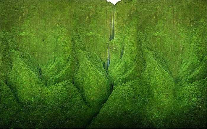 Thác nước Honokohau cao nhất đảo Maui với độ cao 335m. Trực thăng là phương tiện duy nhất để chiêm ngưỡng vẻ đẹp quyến rũ của thác nước này
