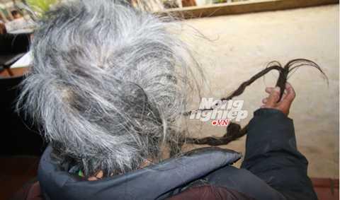 Mái tóc của lão Páo dài gần 3m