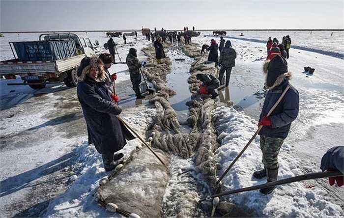 Thả lưới xuống mặt hồ đã được khoan thủng