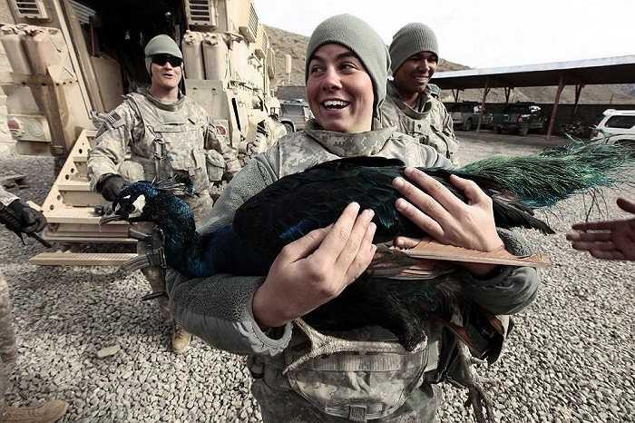 Nữ quân nhân Jessica Harmon tười cười ôm một con công ở trạm cảnh sát Wazi-Zadram, tỉnh Paktya, Afghanistan