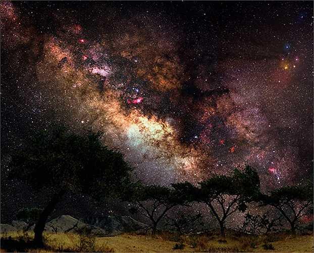 Gerald Rhemann là một nhà nhiếp ảnh thiên văn người Áo. Ông đam mê chụp ảnh thiên văn từ năm 1989.
