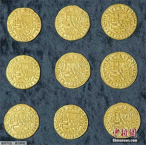 Khoảng 350 đồng xu vàng dã được tìm thấy trên con tàu đắm. Đoàn tàu này có 11 chiếc bị chìm do gặp bão sau khi khởi hành từ Cuba về Tây Ban Nha