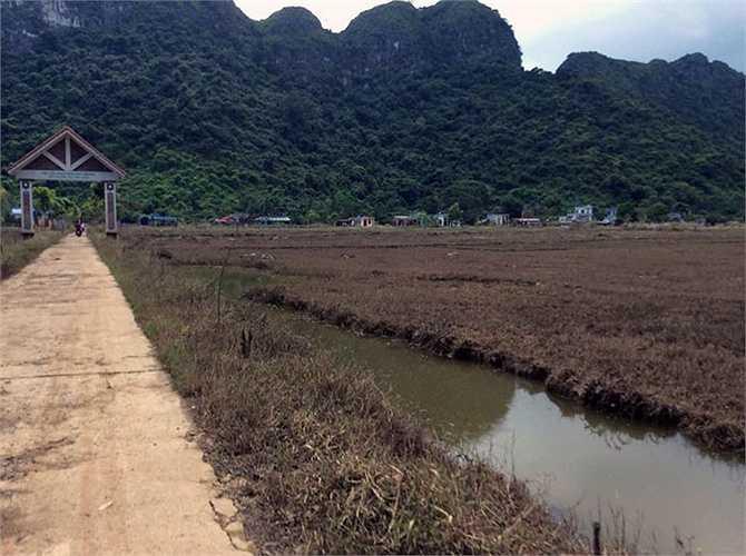Ruộng vườn của người dân mất trắng sau mưa lũ.