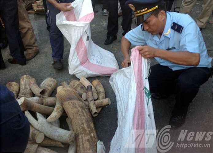 Đây là vụ buôn lậu ngà voi số lượng lớn