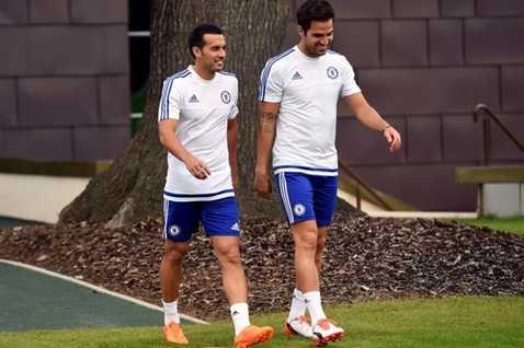 Pedro và Fabregas là đồng đội từ thời còn ở lò La Masia