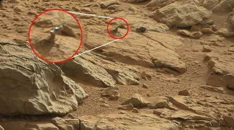Hình ảnh con thằn lằn kỳ lạ trên sao Hỏa