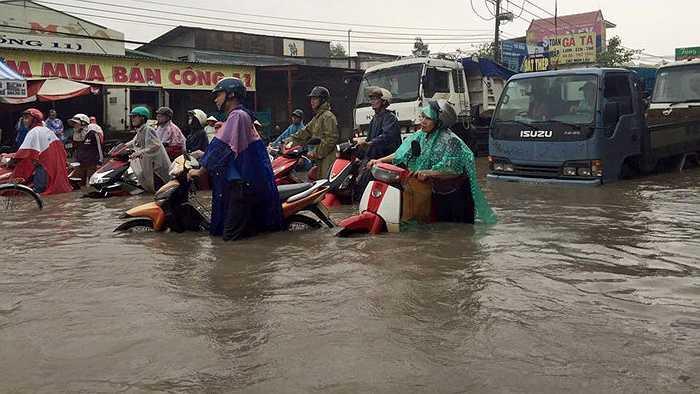 Các phương tiện như bơi trên phố.