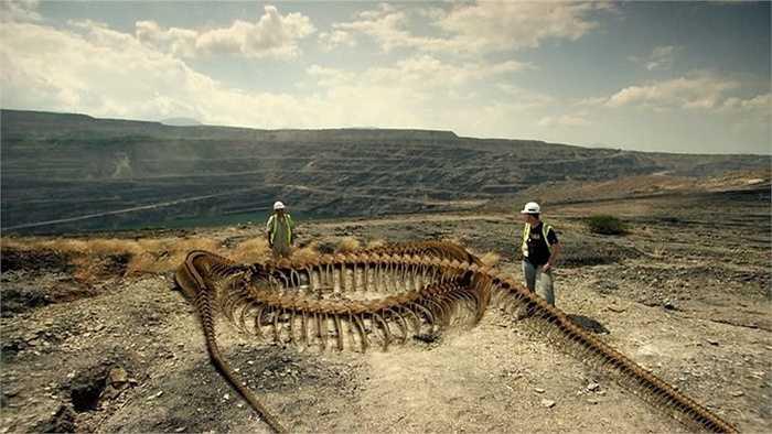 Các nhà nghiên cứu ước tính rằng loài này dài khoảng 13 m, cân nặng khoảng 1,2 tấn và rộng khoảng 1 m tại điểm dày nhất trên cơ thể nó. Các hóa thạch của 28 cá thể Titanoboa được tìm thấy trong các mỏ than tại Cerrejón ở miền bắc Colombia vào năm 2009. Qua nghiên cứu cho thấy, trăn Titanoboa tuy mang hình dáng của họ nhà trăn nhưng lại sở hữu cách săn mồi giống như cá sấu. Cấu trúc cơ thể của loài rắn này rất gần với họ trăn và nó đã được đặt tên là Titanoboa Cerrejonensis, nghĩa là Trăn khổng l
