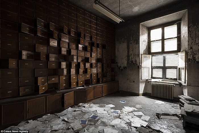 Tự nhiên tàn phá các căn phòng