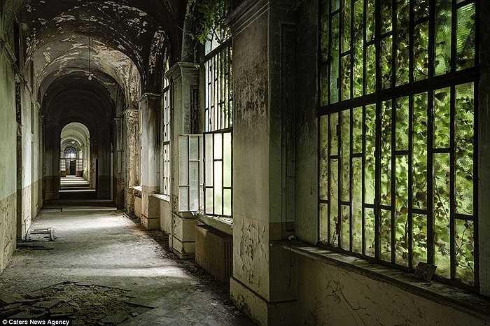 Hành lang hoang toàn của tòa nhà sau gần 40 năm bỏ hoang
