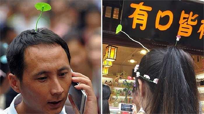 Ở bất cứ đâu trên đường phố Bắc Kinh, người ta cũng có thể bắt gặp hình ảnh 'cây con mọc trên đầu' người từ trẻ nhỏ đến người lớn