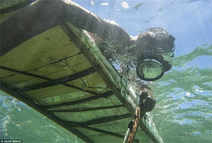 Lặn biển tìm cá