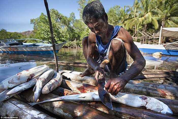 Người đàn ông làm cá ngay bên bãi biển