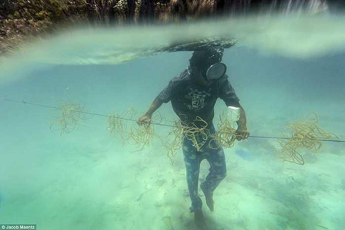 Người Tagbanua lặn biển đi săn