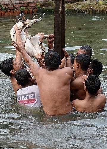 Lễ hội Deopokhari được tổ chức thường niên vào tháng 8 ở Khokana, Kathmandu, Nepal. Tại đây, hàng chục người dân sẽ xé xác và dìm chết một con dê cái được lựa chọn làm vật tế thần