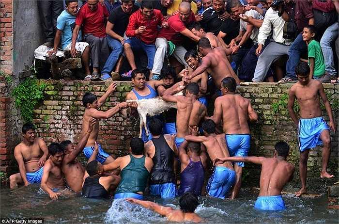 Tục lệ này đã kéo dài 900 năm và nhận được sự tham gia đông đảo của dân làng. Địa điểm tổ chức sự kiện là tại Hồ nước thiêng của làng.