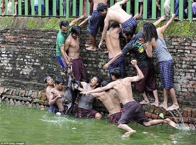 Lễ hội giết dê được tổ chức hàng năm và thường được cả làng tham gia chứng kiến