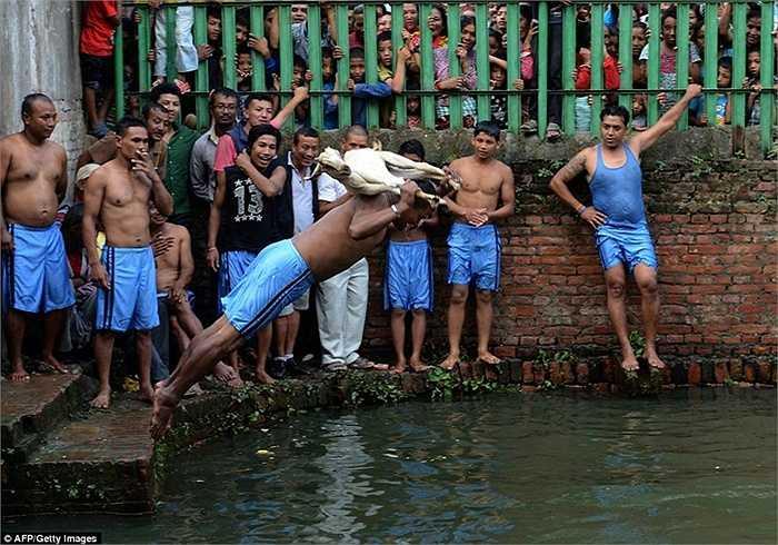 Một người đàn ông cầm con dê trên tay và lao xuống hồ nước để dìm chết nó. Hành động được coi là vô cùng man rợ và bạo lực