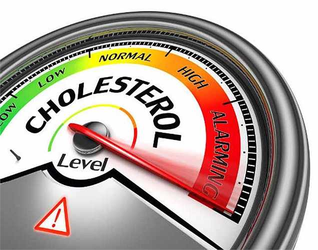 Không có cholesterol: Đậu bắp là một trong những loại rau tốt nhất, sử dụng an toàn cho những người có cholesterol cao. Do đó, nó cũng giúp làm giảm bệnh tim mạch.