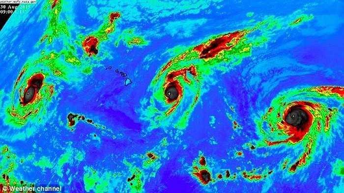 Theo các nhà khoa học, nguyên nhân của việc xuất hiện cùng 1 lúc 3 cơn bão trên biển là do nhiệt độ nước biển Thái Bình Dương đang cao hơn 2 độ C