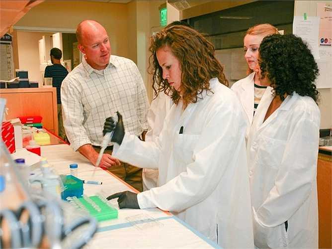 9. Kỹ sư y sinh học - Mức lương trung bình năm: 91.760 USD  Mô tả công việc: Phân tích và thiết kế giải pháp cho các vấn đề trong sinh học và y học, với mục tiêu nâng cao chất lượng và hiệu quả của việc chăm sóc bệnh nhân.  Yêu cầu: Thông thường cần bằng cử nhân trong kỹ thuật y sinh từ một chương trình đào tạo được công nhận. Ngoài ra, họ có thể là cử nhân trong một lĩnh vực kỹ thuật khác và sau đó tốt nghiệp thêm ngành kỹ thuật y sinh hoặc đã được đào tạo qua về kỹ thuật y sinh.