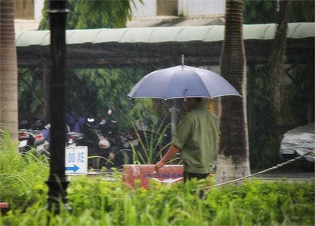 Tuy nhiên, khoảng 9 giờ 30 phút sáng, ông thầy người Nhật Bản đã cho các học trò của mình ra sân thực hiện một số bài tập thể lực dưới mưa.