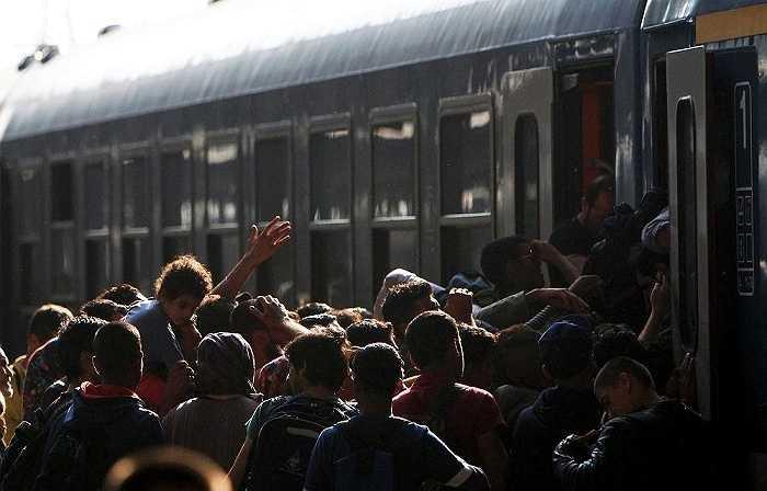 Đoàn người di cư chen chúc lên chuyến tàu ở nhà ga Keleti, thủ đô Budapest, Hungary mong có cơ hội đáp chuyến tàu đến Tây Âu