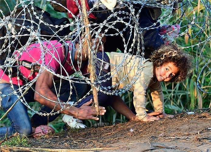 Người lớn và cả trẻ nhỏ chui qua hàng rào thép gai ở vùng biên giới Hungary - Serbia