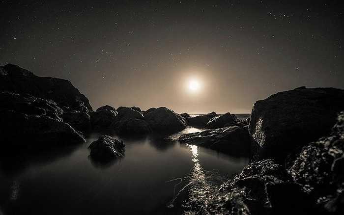 Những ngôi sao nằm trên sóng biển