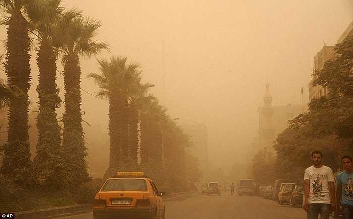 Hãng thông tấn nhà nước Syria SANA cho biết hiện đã có ba người dân ở các tỉnh miền Trung Hama chết vì bão cát và hơn 3500 trường hợp bị khó thở trong đó chỉ hơn 1200 trường hợp được điều trị trong các bệnh viện do quá tải.