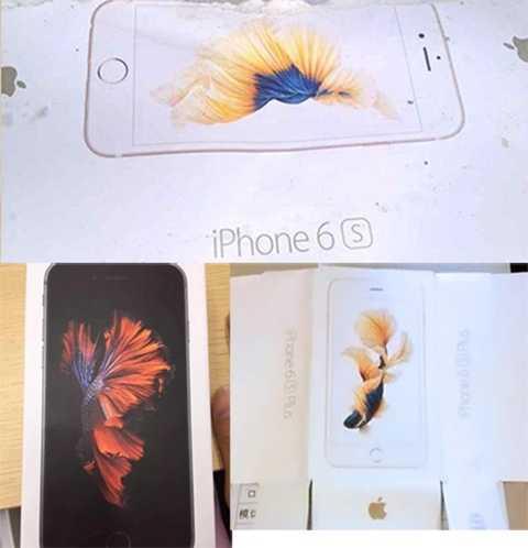Vỏ hộp mới của iPhone in hình chú cá vàng