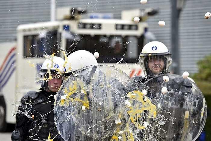 Nông dân ném trứng vào cảnh sát trong một cuộc biểu tình bên ngoài trụ sở Hội đồng Liên minh châu Âu tại Brussels, Bỉ