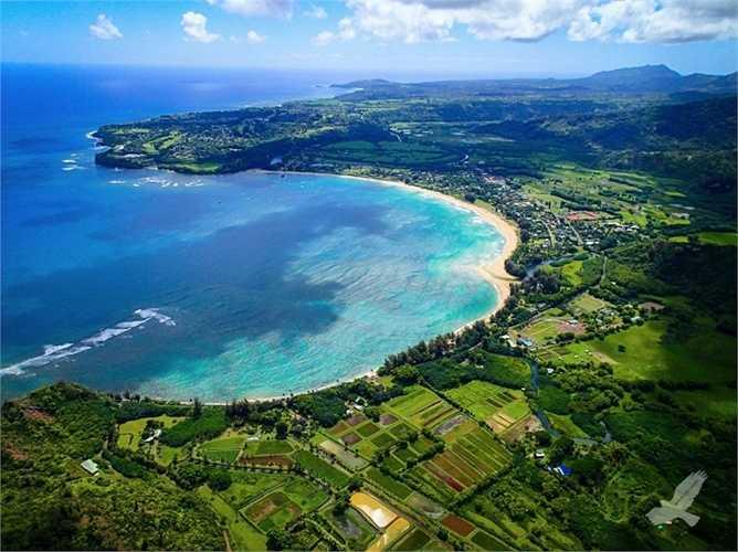 Còn chốn yên bình của đại gia công nghệ trẻ nhất thế giới, Mark Zuckerberg là hòn đảo rộng lớn ngoài khơi phía bắc Kauai