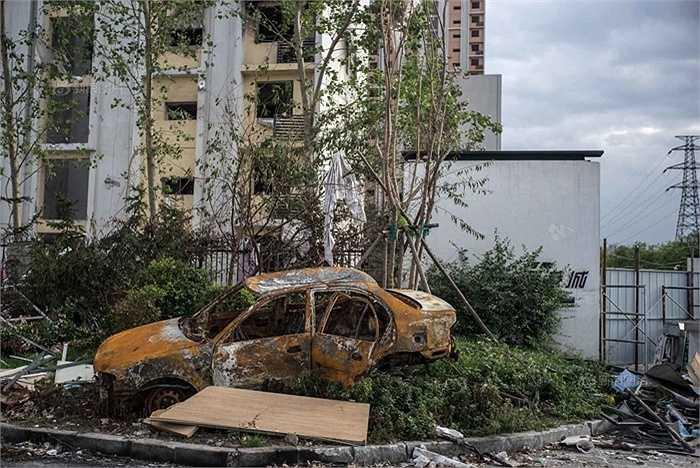 165 người đã chết, 8 người mất tích sau vụ nổ kép tạo nên khung cảnh hoang tàn như ngày tận thế