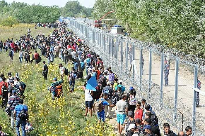 Những người tỵ nạn đi lại xung quanh hàng rào biên giới trong tuyệt vọng