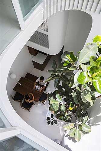 Nhóm kiến trúc sư đã đưa ra giải pháp là tạo một mối liên hệ tự nhiên theo phương vị dọc của công trình, bằng cách tạo một giếng trời tại vị trí trung tâm ngôi nhà.