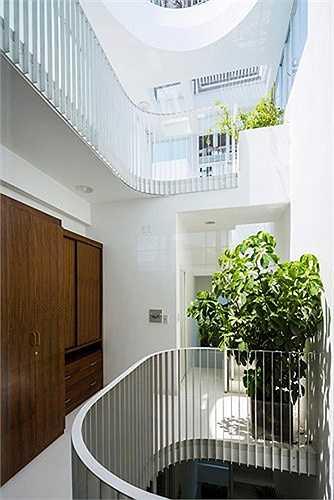 Việc thông gió, lấy sáng và bài trí cây xanh ở các lối đi, hành lang được thiết kế khá hợp lý.