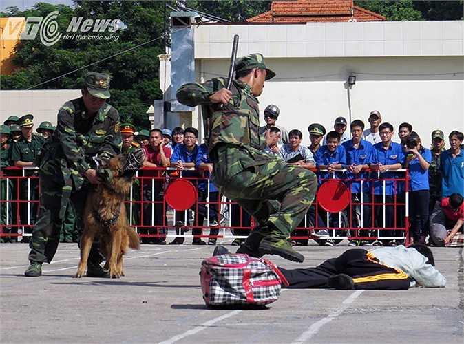 Các chiến sỹ cùng chó chiến đấu truy bắt đối tượng.