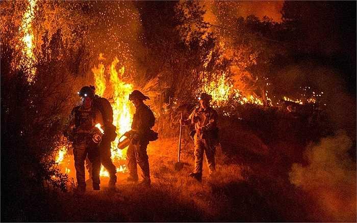Lính cứu hỏa 'chiến đấu' với ngọn lửa trong trận cháy rừng lớn ở Butte, thị trấn San Andreas, thuộc hạt Calaveras, California