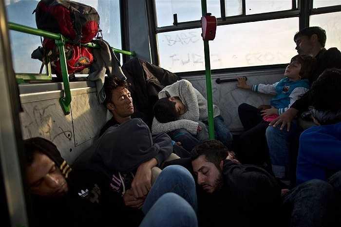 Những người di cư ngủ vật vờ trên xe buýt trước khi được cảnh sát Hungary đưa lên tàu tới biên giới Áo